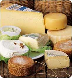 formaggi liguri
