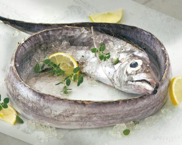 Pesce lama